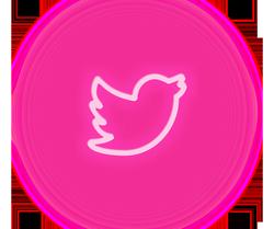 Ícone Twitter